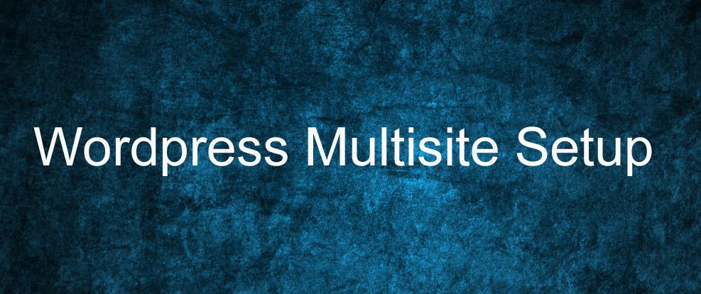 Wordpress Multisite Setup