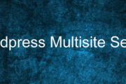 Wordpress Multisite Setup
