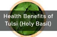 Health Benefits of Tulsi (Holy Basil)